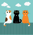 three kittys on fence vector image