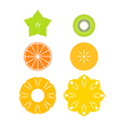 Cut fruit vector image vector image