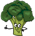 funny broccoli vegetable cartoon vector image vector image