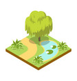 green willow tree near lake isometric 3d icon vector image