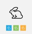of animal symbol on rabbit vector image