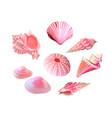 pink seashells under the sea vector image vector image