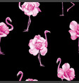 flamingo rose black background vector image vector image
