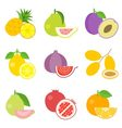 Fruit icons set 1 vector image vector image