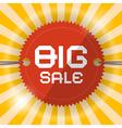 Retro Big Sale Template vector image vector image