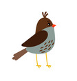 cute little bird icon vector image