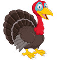 cartoon turkey isolated on white background vector image vector image