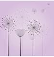 Dandelion background vector image vector image