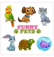 Funny cartoon pets collection vector image vector image