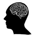 human brain outline sketched up vector image