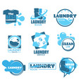 laundry service isolated icon clothes and washing vector image vector image