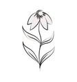 minimalist tattoo flower line art blossom botanic vector image vector image