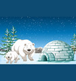 polar bears standing near igloo at night vector image