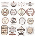 set of retro design labels and elements vector image