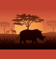 silhouette of rhino at savanah vector image