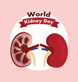world kidney day healthcare medical campaign vector image