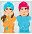 two attractive brunette women friends outdoors vector image