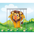 A cage with a wild lion vector image vector image