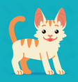 cute cat standing of a happy vector image