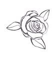 delicate flower drawing icon image vector image vector image