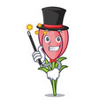 magician crocus flower mascot cartoon vector image vector image