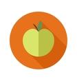 flat modern round apple icon vector image