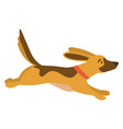 dog running in autumn park doggy going vector image vector image
