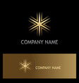 gold star geometry shine logo vector image