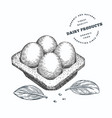 hand drawn sketch style eggs in container organic vector image