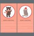 merry christmas icon of bear and cat vector image vector image