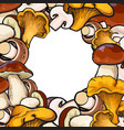 square frame of sketch mushrooms with round place vector image vector image