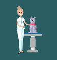 veterinarian taking care cat patient on table vector image vector image