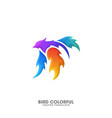 bird fire colorful design template vector image vector image