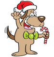 Cartoon dog holding a candy cane vector image