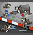 many raccoons searching trash by the road vector image