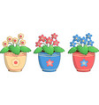 three pots of violets vector image