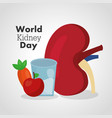 world kidney day card food nutrition diet healthy vector image