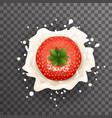 cream milk strawberry curl splash drops fruit vector image