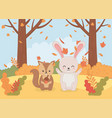 cute animal autumn season flat design vector image vector image
