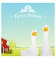 farm animal background with ducks vector image