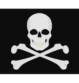 Jolly Roger Skull with crossbones vector image