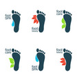 beautiful feet vector image