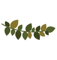 christmas leaf Silhouette with ramifications vector image