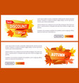 discounts offer special price invitation vouchers vector image vector image