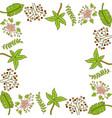 flower leaf frame empty template vector image vector image