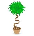Bent Tree in Flowerpot vector image