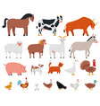 farm animals livestock and cute pets horse cow vector image