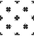 four leaf clover pattern seamless black vector image vector image