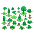 isometric 3d trees city park or forest tree vector image