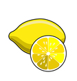 Lemon isolated on white background vector image vector image